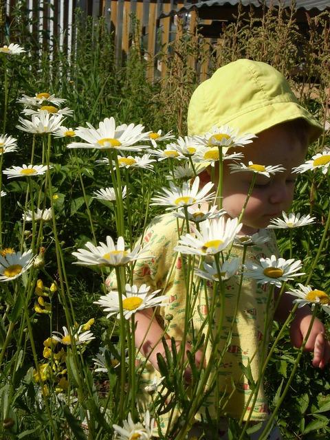 Kids flowers baby.