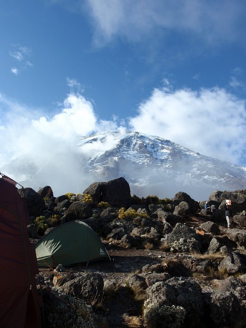 Kilimanjaro mountain africa, nature landscapes.