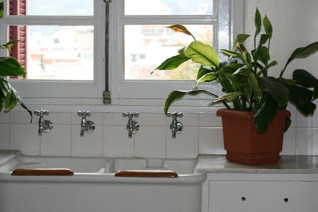 Kitchen sink cranes white, architecture buildings.