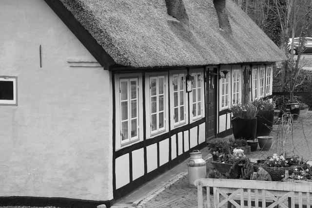 Kro thatched black and white.