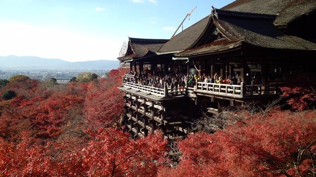 Kyoto autumnal leaves tourist destination.