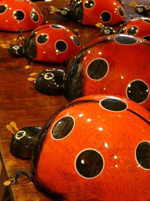 Ladybug pottery ceramic.