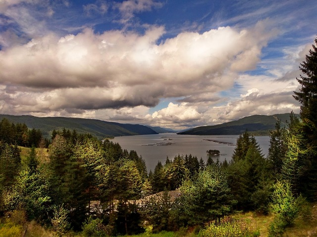Lake bulgaria dospat, nature landscapes.
