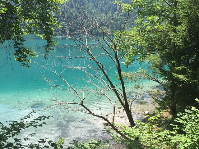 Lake lake weissensee green water.