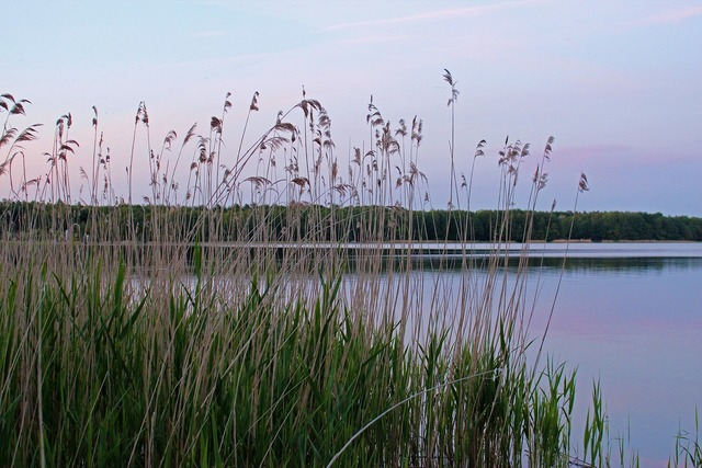 Lake mecklenburg western pomerania labusseee, travel vacation.