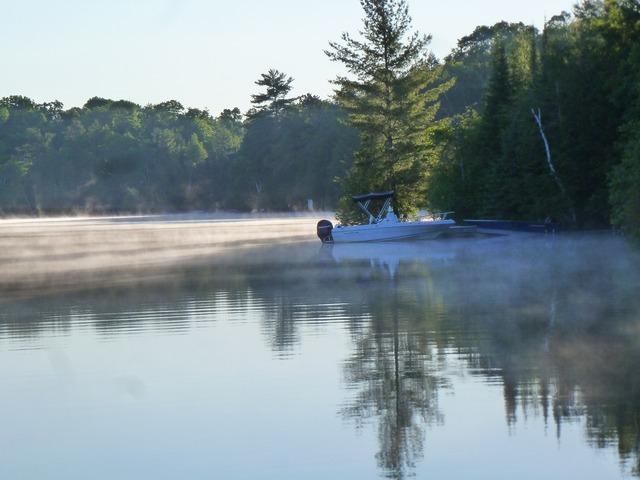 Lake mist calm, nature landscapes.