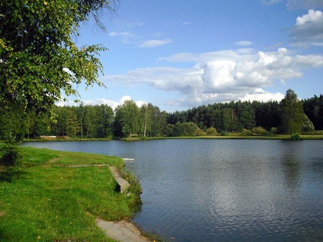 Lake pond landscape, nature landscapes.
