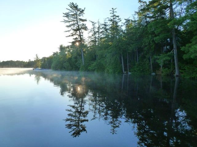 Lake shore reflection.