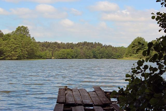 Lake web mecklenburg western pomerania, nature landscapes.