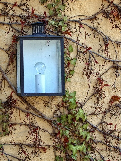 Lamp light wall, nature landscapes.