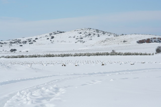Landscape castilla snow, nature landscapes.