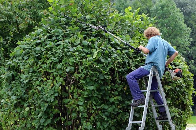 Landscape gardener gardener workers, people.