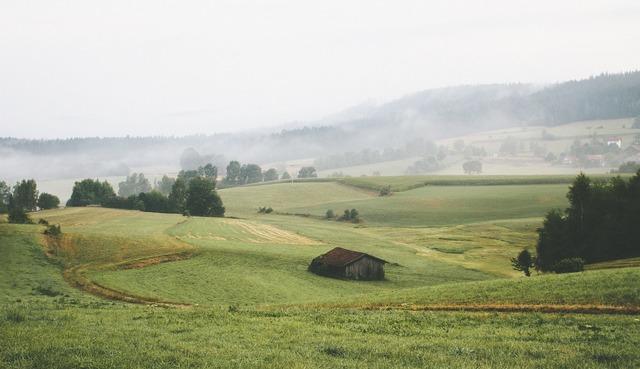 Landscape hills rural, nature landscapes.