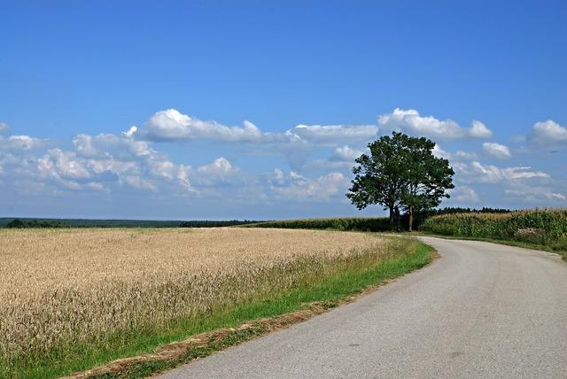 Landscape south bohemia field, nature landscapes.