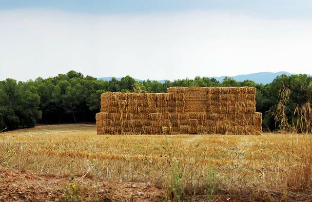 Landscape summer haystack, nature landscapes.