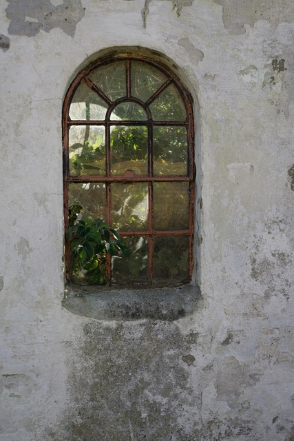 Leave decay window, nature landscapes.