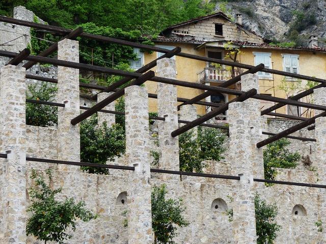 Lemon plantation lemons plantation, architecture buildings.