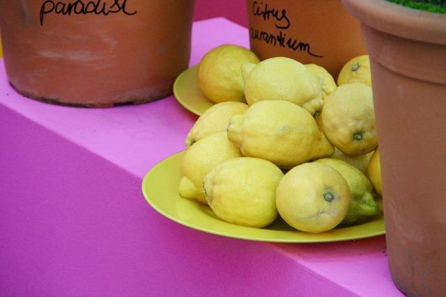 Lemons zitronendeko yellow, nature landscapes.