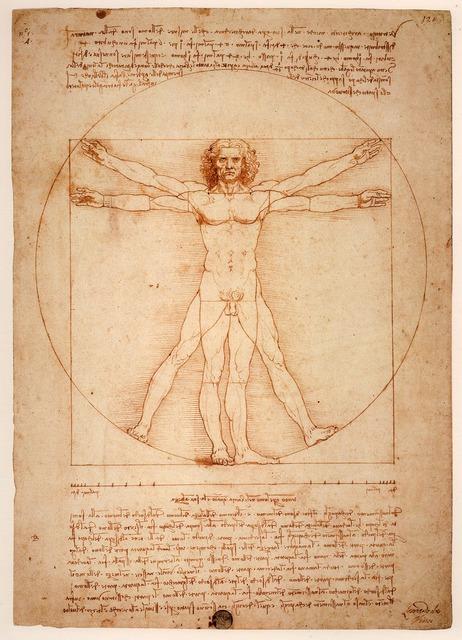 Leonardo da vinci vitruvian man uomo vitruviano.