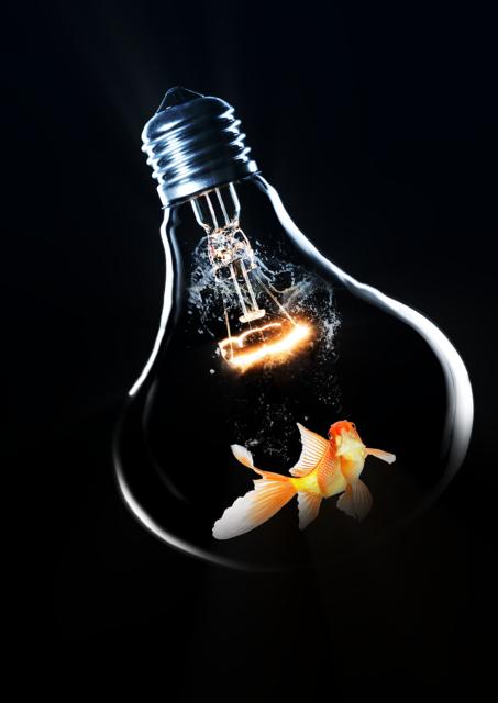 Light lightbulb lighting.