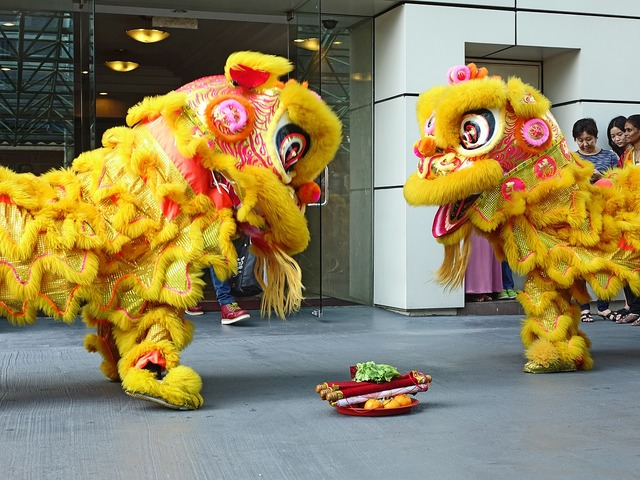 Lion dance chinese tradition.