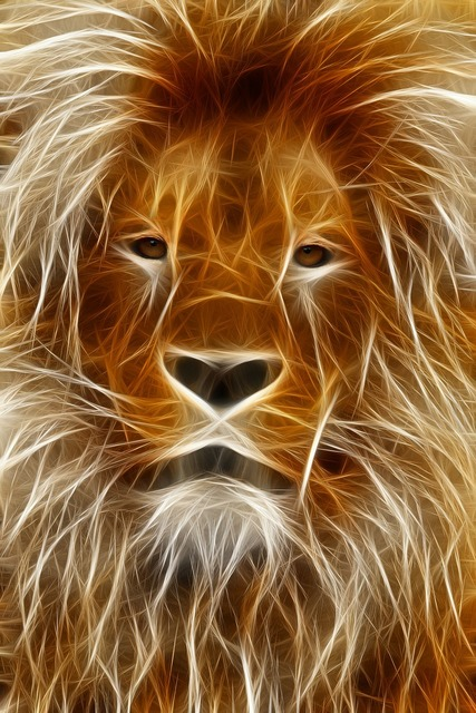 Lion image editing graphic.