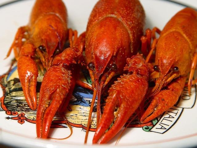 Lobster crawfish shear, animals.