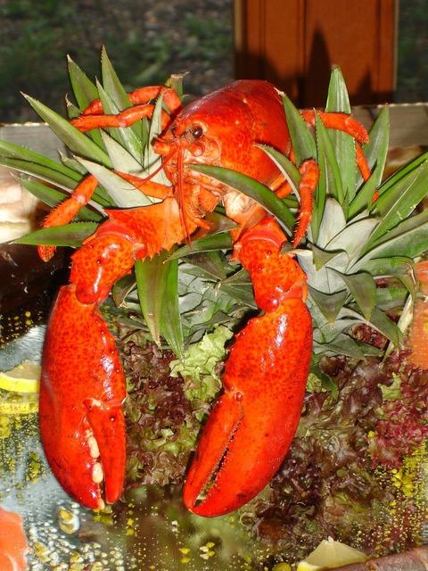 Lobster zehnfußkrebs animal, animals.