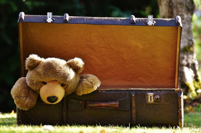 Luggage antique teddy.