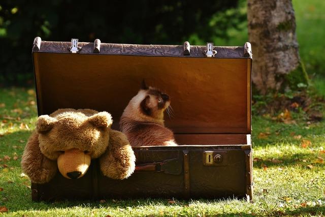 Luggage antique teddy, animals.