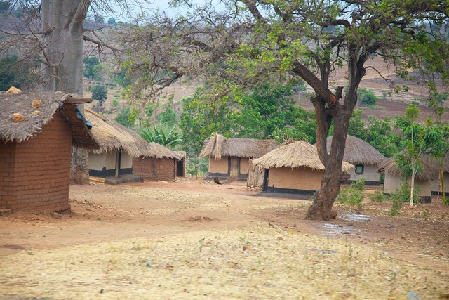 Malawi africa village, nature landscapes.