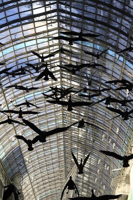 Mall toronto birds, architecture buildings.