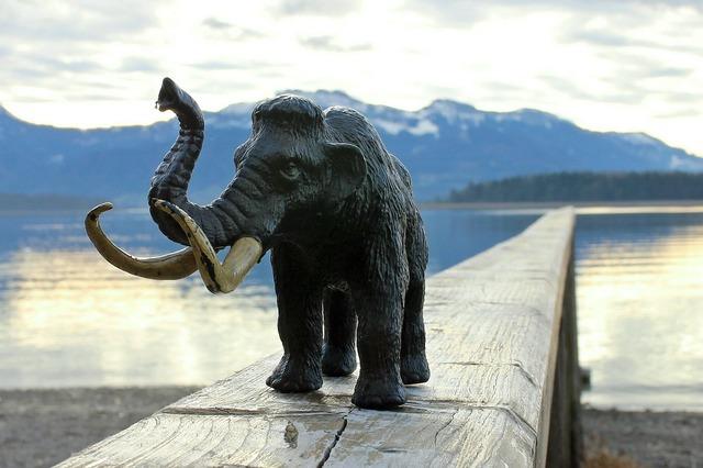 Mammoth elephant tusks, animals.