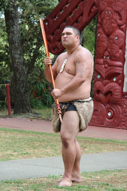 Maori man spear, people.
