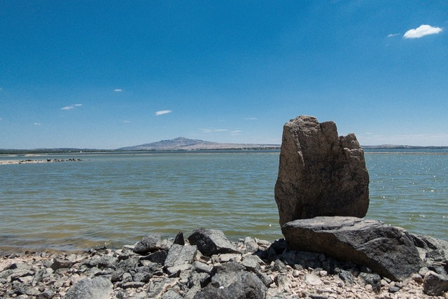 Marsh sea rock, nature landscapes.