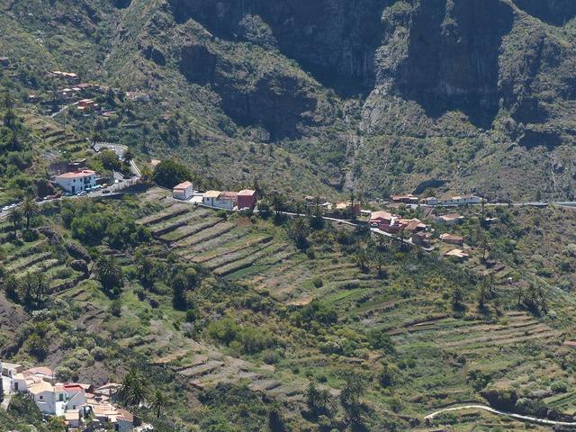 Masca plantations steep slope.