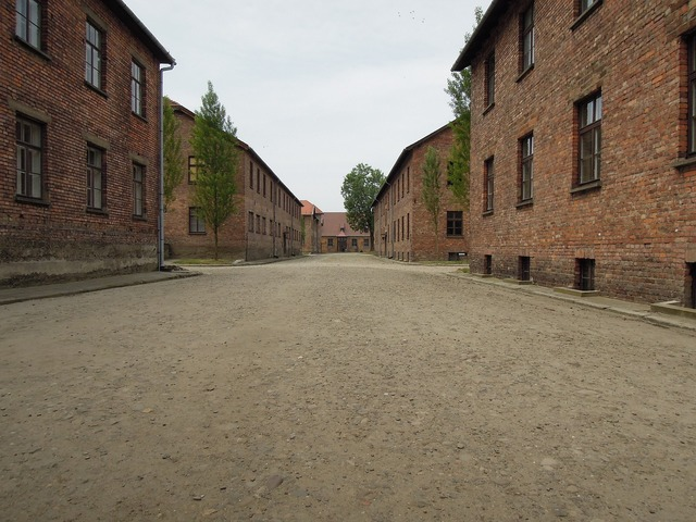 Massacre auschwitcz birkenau, architecture buildings.