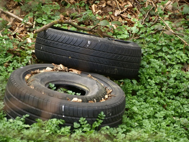 Mature auto tires tires.