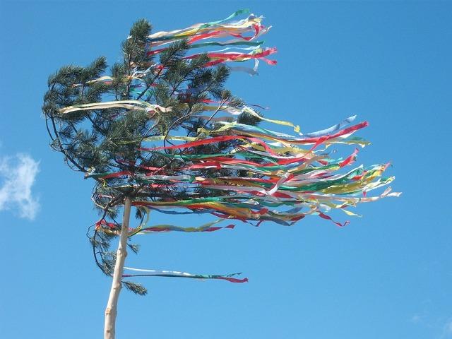 Maypole celebration tree.