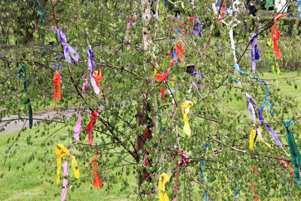 Maypole decorated birch tradition.