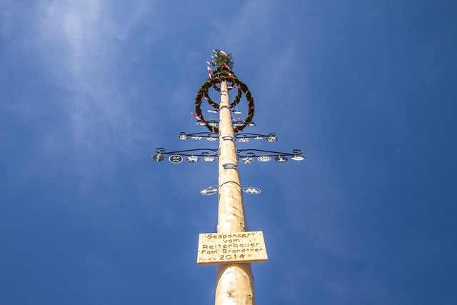 Maypole tree tradition.
