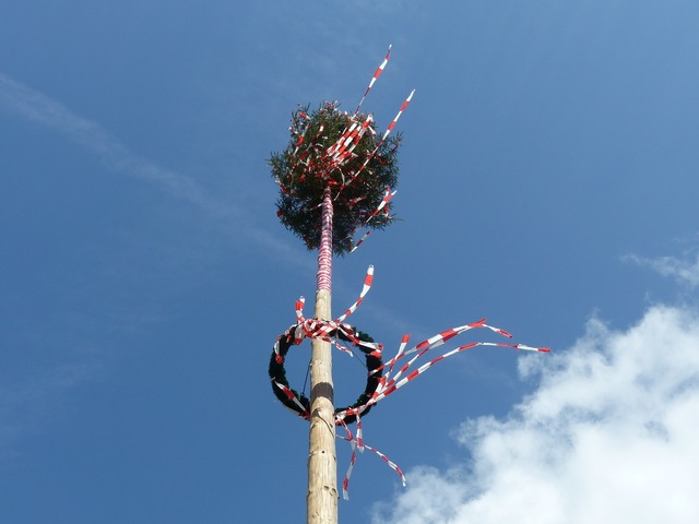 Maypole wind bands.