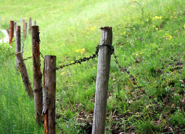 Meadow pasture fence.