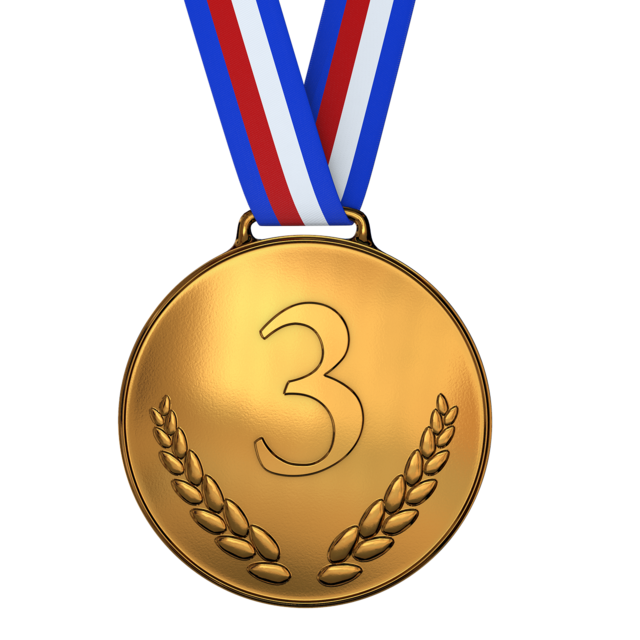 Medal bronze award.