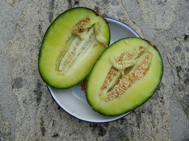 Melon fruit dessert, food drink.