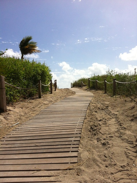 Miami beach sand, travel vacation.