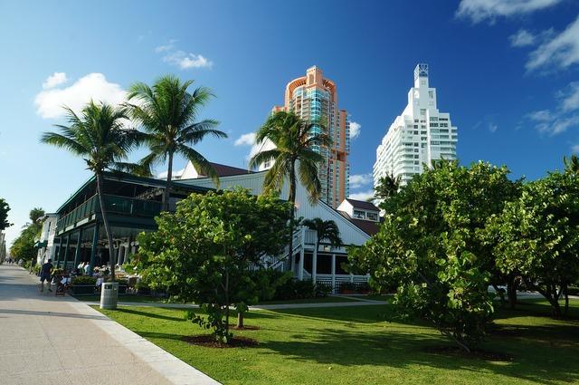 Miami florida buildings.