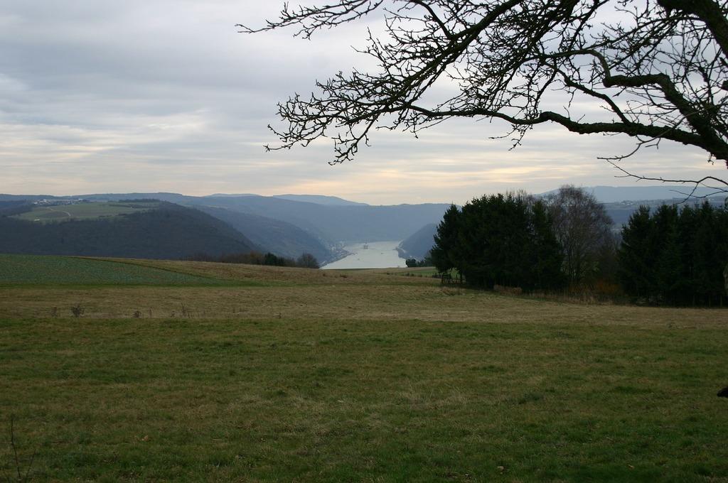 Middle rhine rhine winter, nature landscapes.