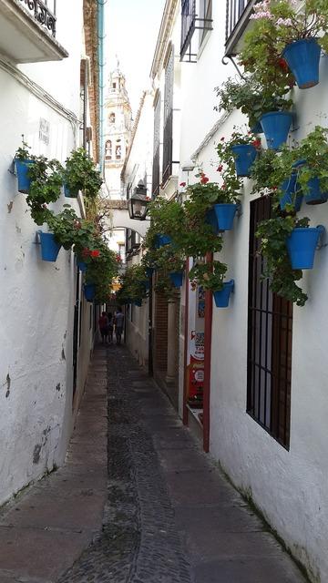 Mijas flower boxes alley.