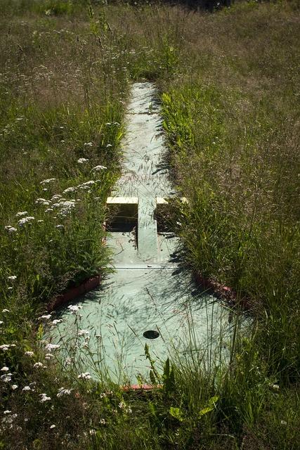Miniature golf abandoned grass.